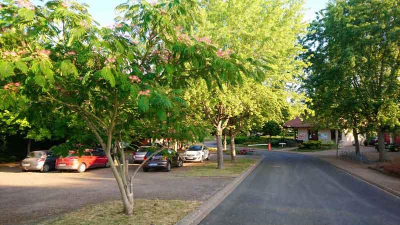 Parking du camping les chênes